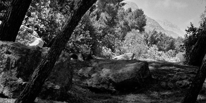 Área Recreativa del río Cuadros