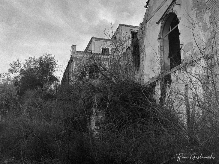 The overgrown gardens around the back of the abandoned cortijo