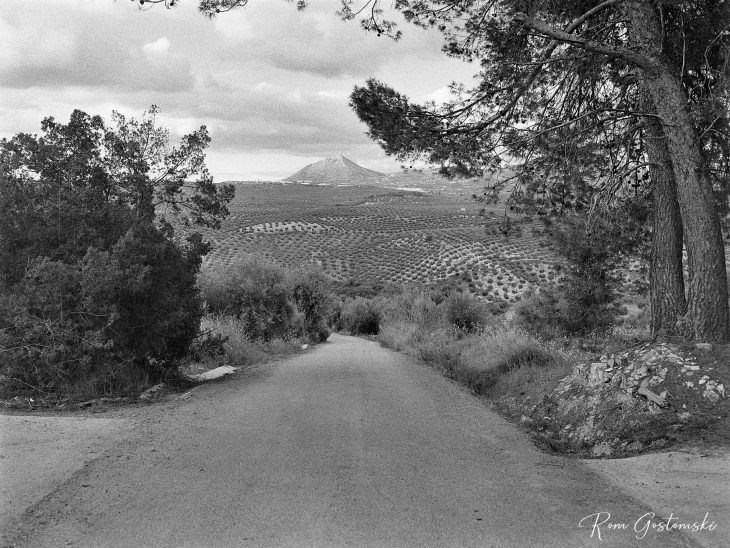 Andalucian olive groves with Peña de Martos in the distance