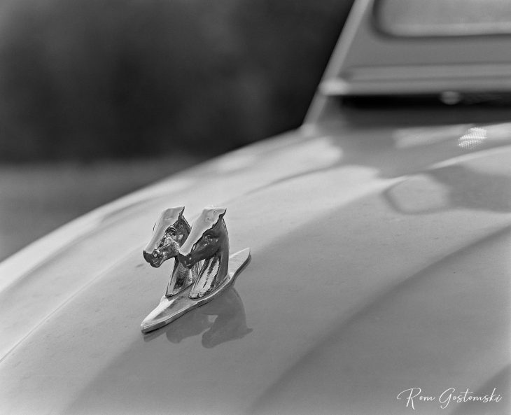 Two horse heads on the bonnet of the Citroën 2CV.